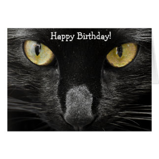 Tarjeta de cumpleaños: ¡Un qué gato! ¡Una qué