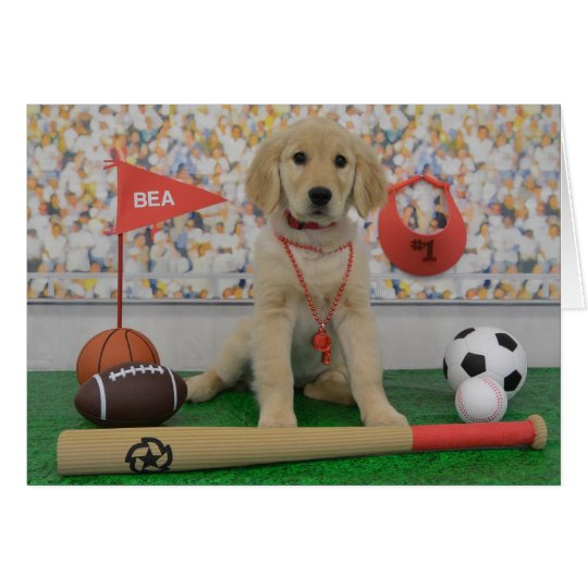 Tarjeta de deportes de Bea