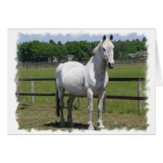 Tarjeta de felicitación árabe del caballo