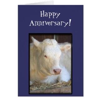 Tarjeta de felicitación blanca de la vaca del