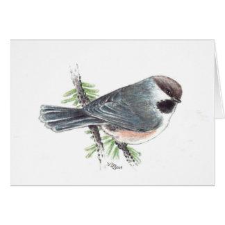Tarjeta de felicitación boreal del Chickadee