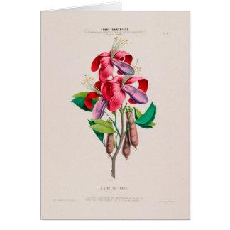 Tarjeta de felicitación botánica