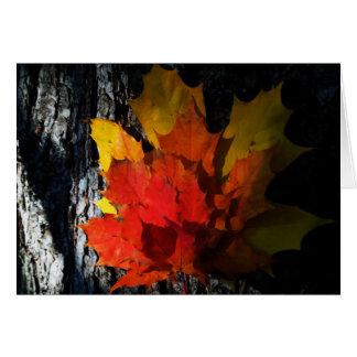 Tarjeta de felicitación Caída-Temática - hojas de