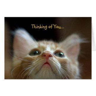 Tarjeta de felicitación con el gatito anaranjado