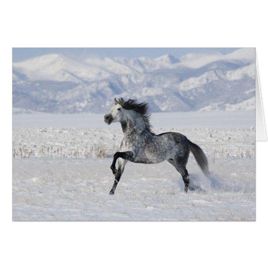 Tarjeta de felicitación corriente del caballo del