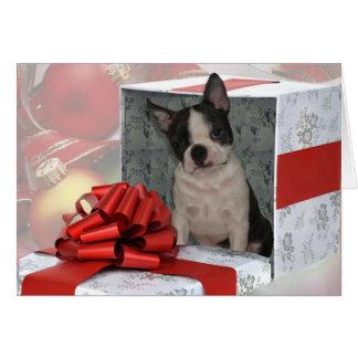 Tarjeta de felicitación de Boston Terrier del