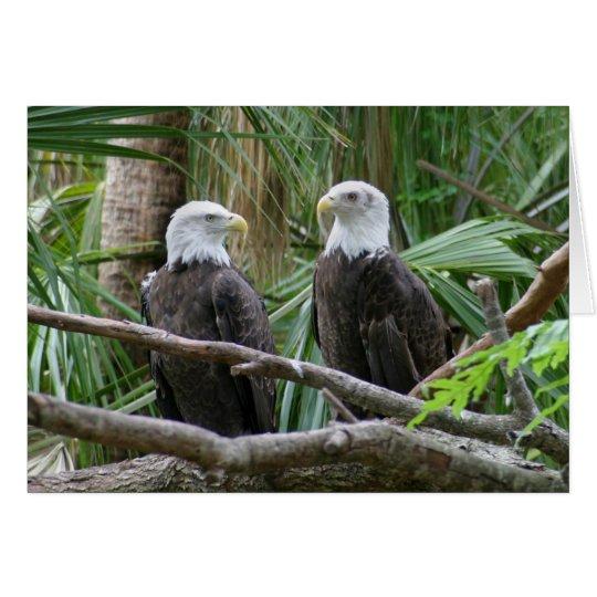 Tarjeta de felicitación de Eagle calvo