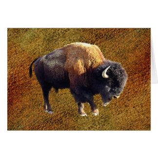 Tarjeta de felicitación de la fauna del búfalo del
