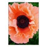 Tarjeta de felicitación de la flor de la amapola