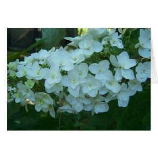 Tarjeta de felicitación de la floración del