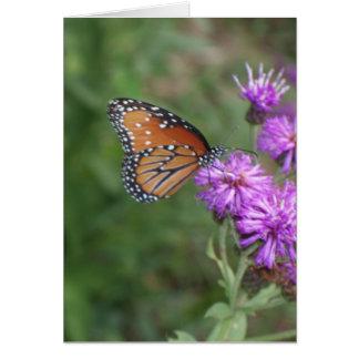 Tarjeta de felicitación de la mariposa y del