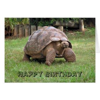 Tarjeta de felicitación de la tortuga gigante