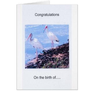 Tarjeta de felicitación de los Enhorabuena-Gemelos