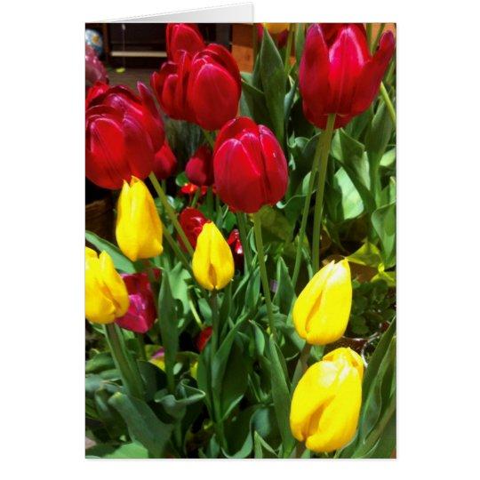 Tarjeta de felicitación de los tulipanes