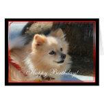 Tarjeta de felicitación de Pomeranian del feliz cu