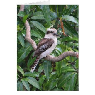 Tarjeta de felicitación de risa de Kookaburra