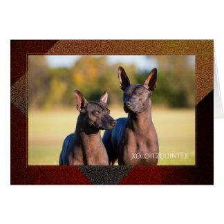 Tarjeta de felicitación de Xoloitzcuintle
