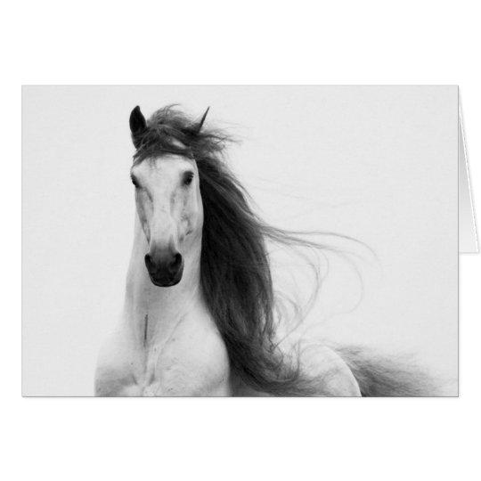 Tarjeta de felicitación del caballo de la gloria