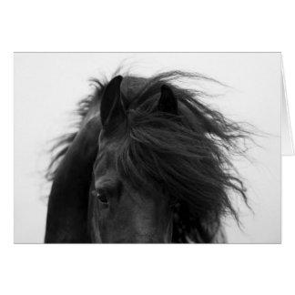 Tarjeta de felicitación del caballo de los ojos