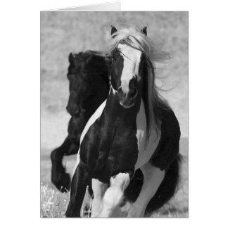 Tarjeta de felicitación del caballo del