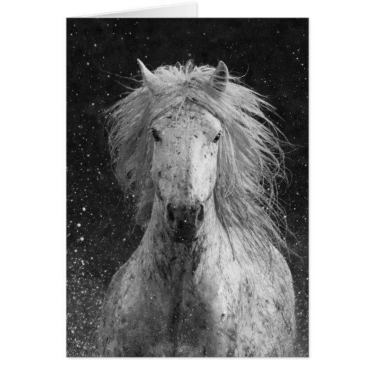 Tarjeta de felicitación del caballo del chapoteo
