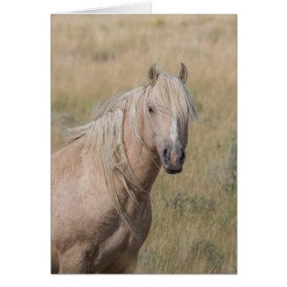 Tarjeta de felicitación del caballo salvaje -