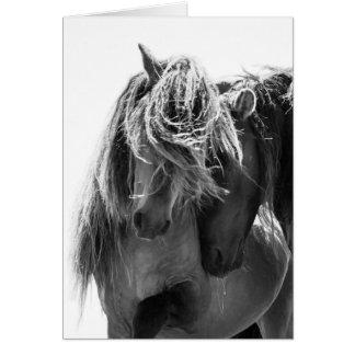 Tarjeta de felicitación del caballo salvaje de 2