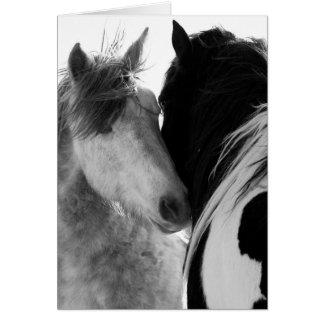 Tarjeta de felicitación del caballo salvaje de dos