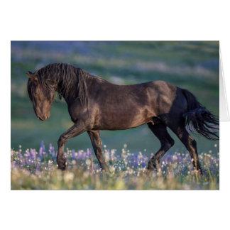 Tarjeta de felicitación del caballo salvaje - la