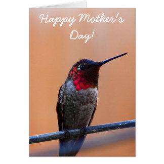 Tarjeta de felicitación del colibrí de Annas de la