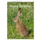 Tarjeta de felicitación del conejo de Jack del
