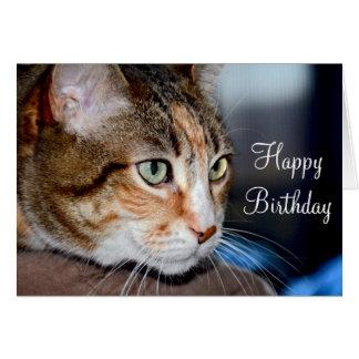 Tarjeta de felicitación del cumpleaños del gato el