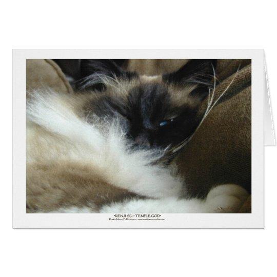 Tarjeta de felicitación del gato de Ragdoll Birman