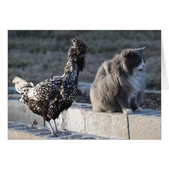 Tarjeta de felicitación del gato y del pollo