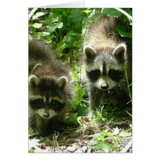 Tarjeta de felicitación del hábitat del mapache