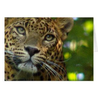 Tarjeta de felicitación del leopardo