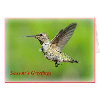 Tarjeta de felicitación del navidad del colibrí