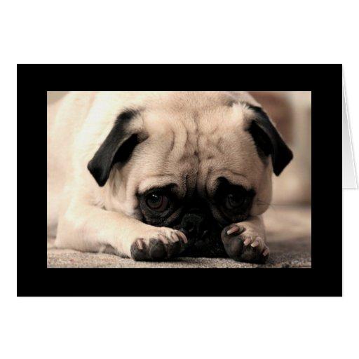 Tarjeta de felicitación del negro del perro de per