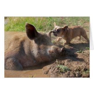 Tarjeta de felicitación del oído de los cerdos