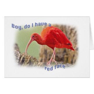 Tarjeta de felicitación del pájaro de Ibis del esc