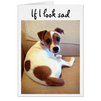 Tarjeta de felicitación del perrito de Jack