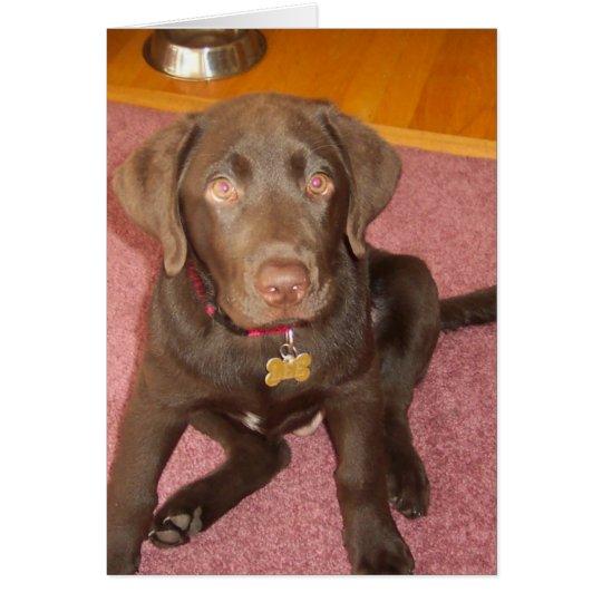 Tarjeta de felicitación del perrito de Labrador