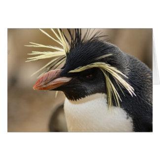 Tarjeta de felicitación del pingüino de Rockhopper