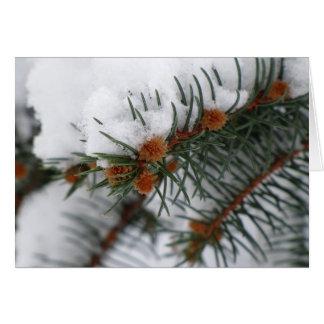 Tarjeta de felicitación del pino Nevado del día de
