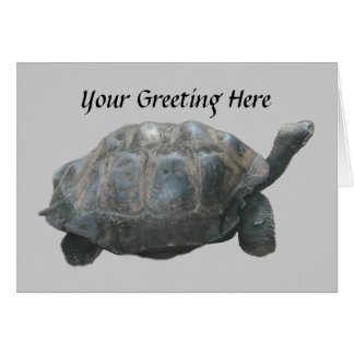 Tarjeta de felicitación del retraso de la tortuga