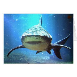 Tarjeta de felicitación del tiburón