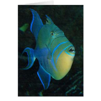 Tarjeta de felicitación del Triggerfish de reina