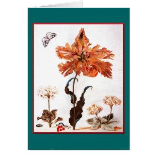 Tarjeta de felicitación del tulipán del loro