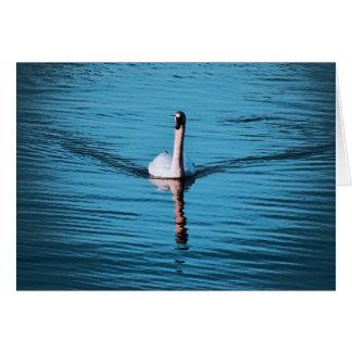 tarjeta de felicitación en blanco del cisne