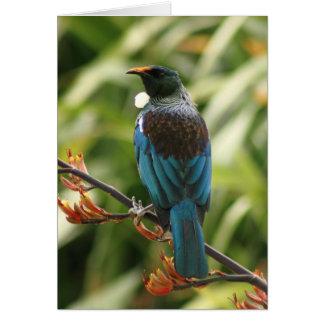Tarjeta de felicitación en blanco: Pájaro de NZ